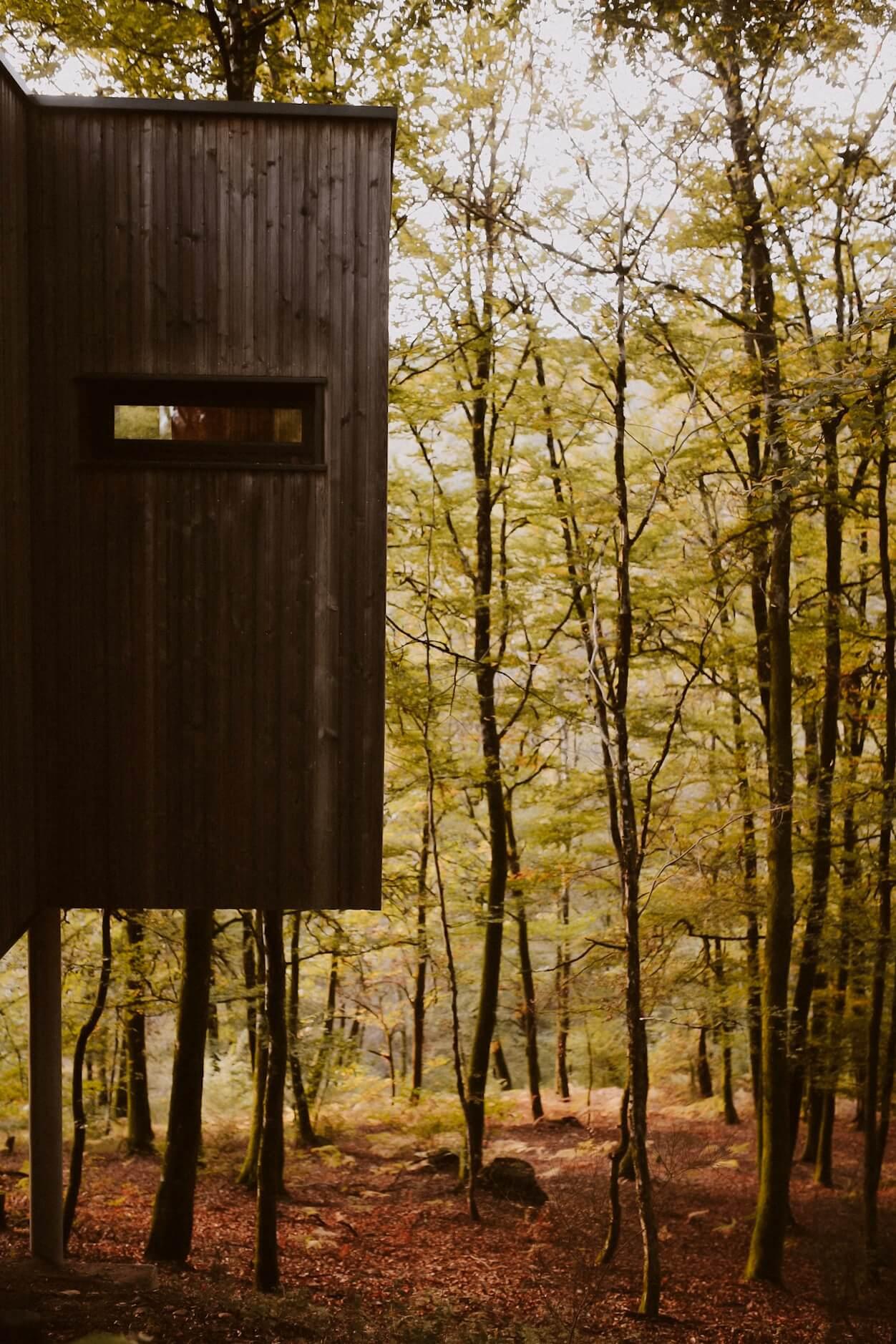 A Sunday Morning Perrine - Les cabanes de Salagnac - Corrèze